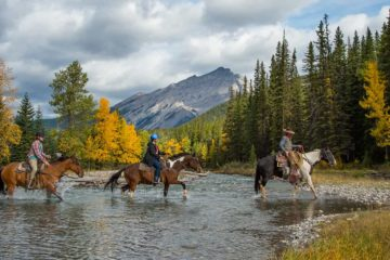 Spray River horseback trail ride