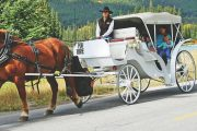 Banff Carriage Ride