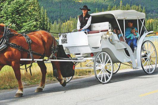 Banff Carriage Ride