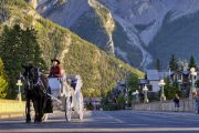 Horse drawn carriage, Banff