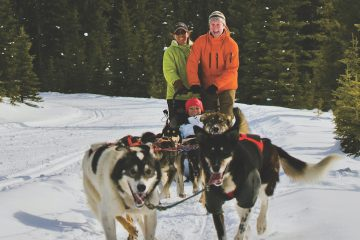 Kingmik Dogsledding Tours
