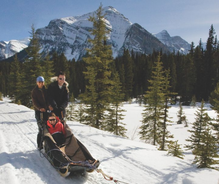 Lake Louise Dogsled