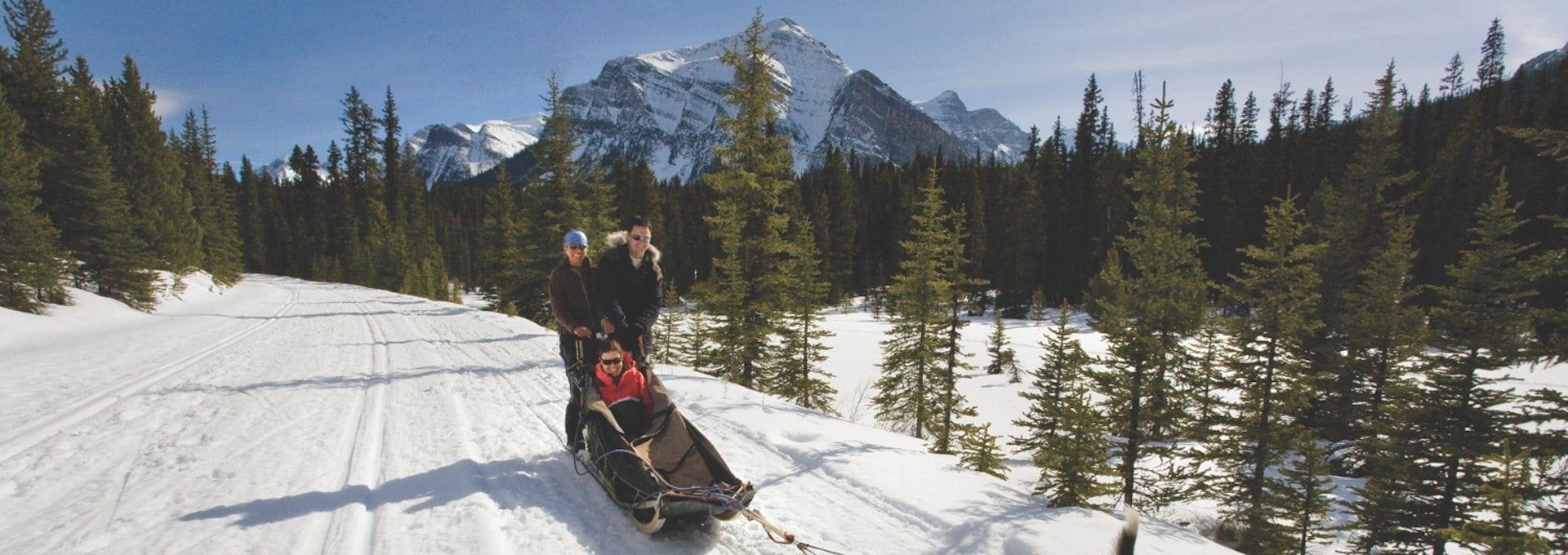 Dogsledding – Narnia 30 mins
