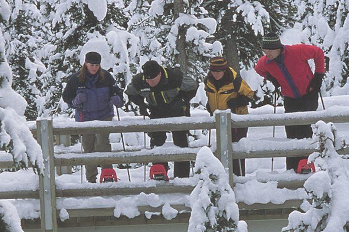 Snowshoeing Tour Banff