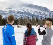 Banff Sightseeing Winter