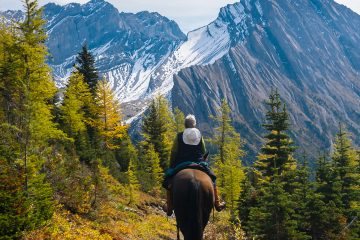 Backcountry Horseback Ride with Discover Banff Tours