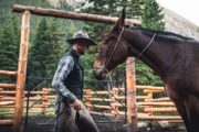 Taking care of the horses at the Halfway Lodge backcountry corral