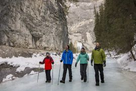 Explore the icy beauty of Grotto Canyon on a guided icewalk tour