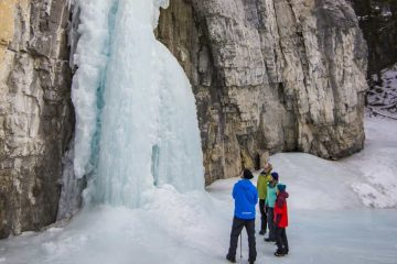 See magnificent frozen falls on the Grotto Canyon Icewalk Tour with Discover Banff Tours in the Canadian Rockies
