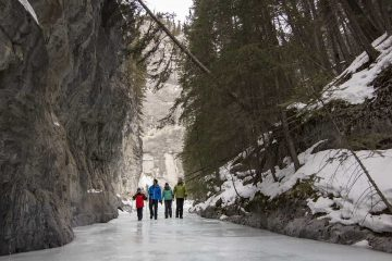 See the frozen beauty of Grotto Canyon on an icewalk with Discover Banff Tours in the Canadian Rockies