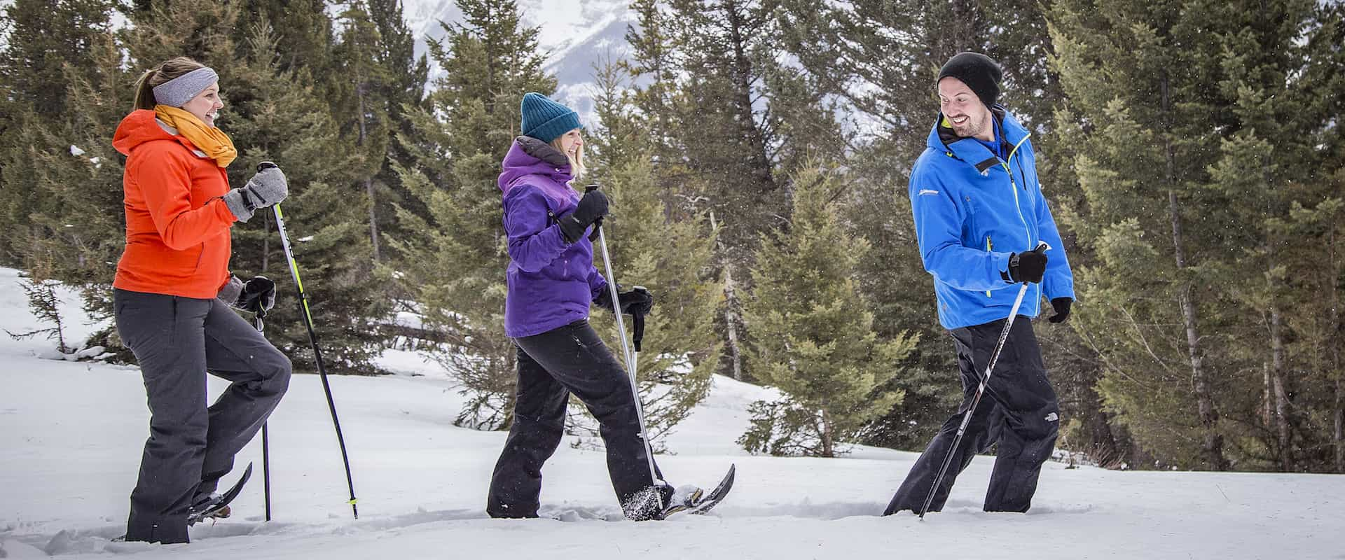 Take an easy Banff snowshoeing tour with Discover Banff Tours in the Canadian Rockies