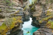 Athabasca falls along the Icefields Parkway Tour