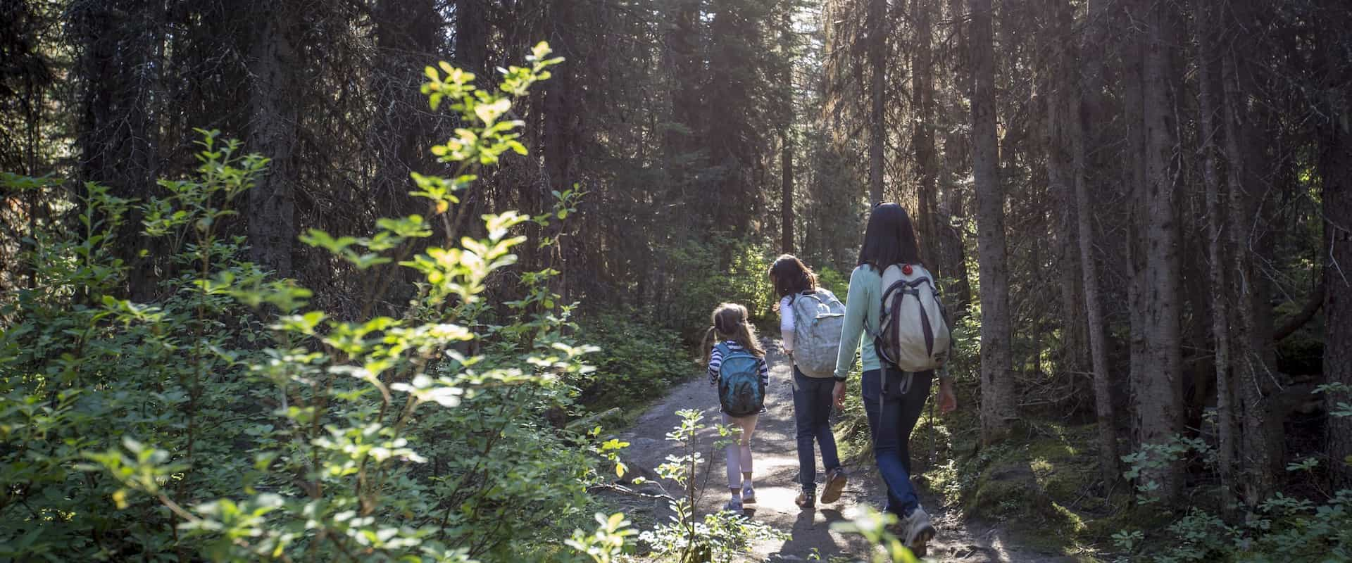 Family hiking in Banff National Park