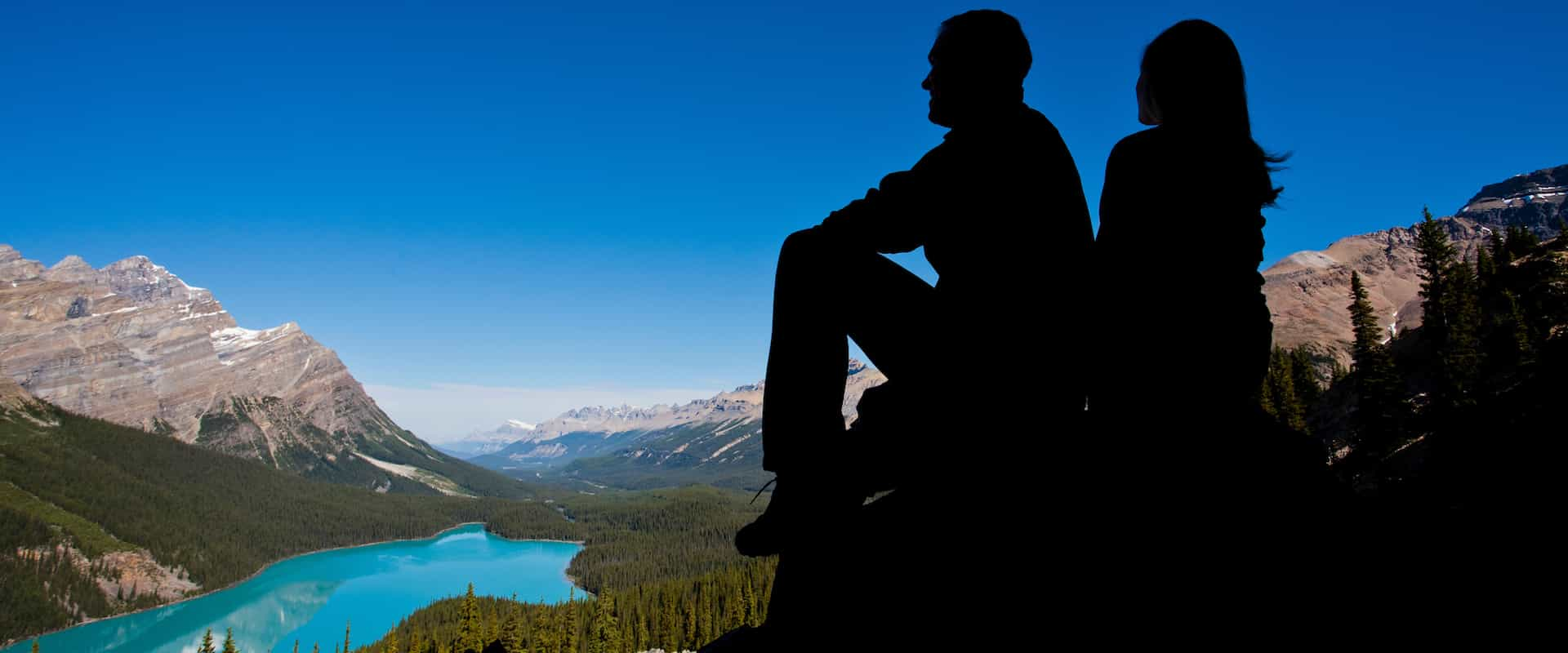 See Peyto Lake on the Columbia Icefields Parkway Tour with Discover Banff Tours