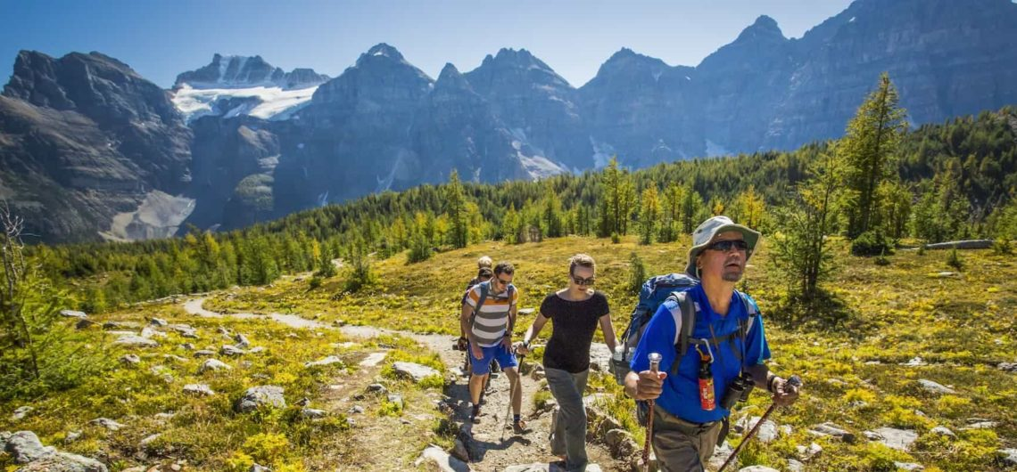 Take a guided hike to Larch Valley with Discover Banff Tours