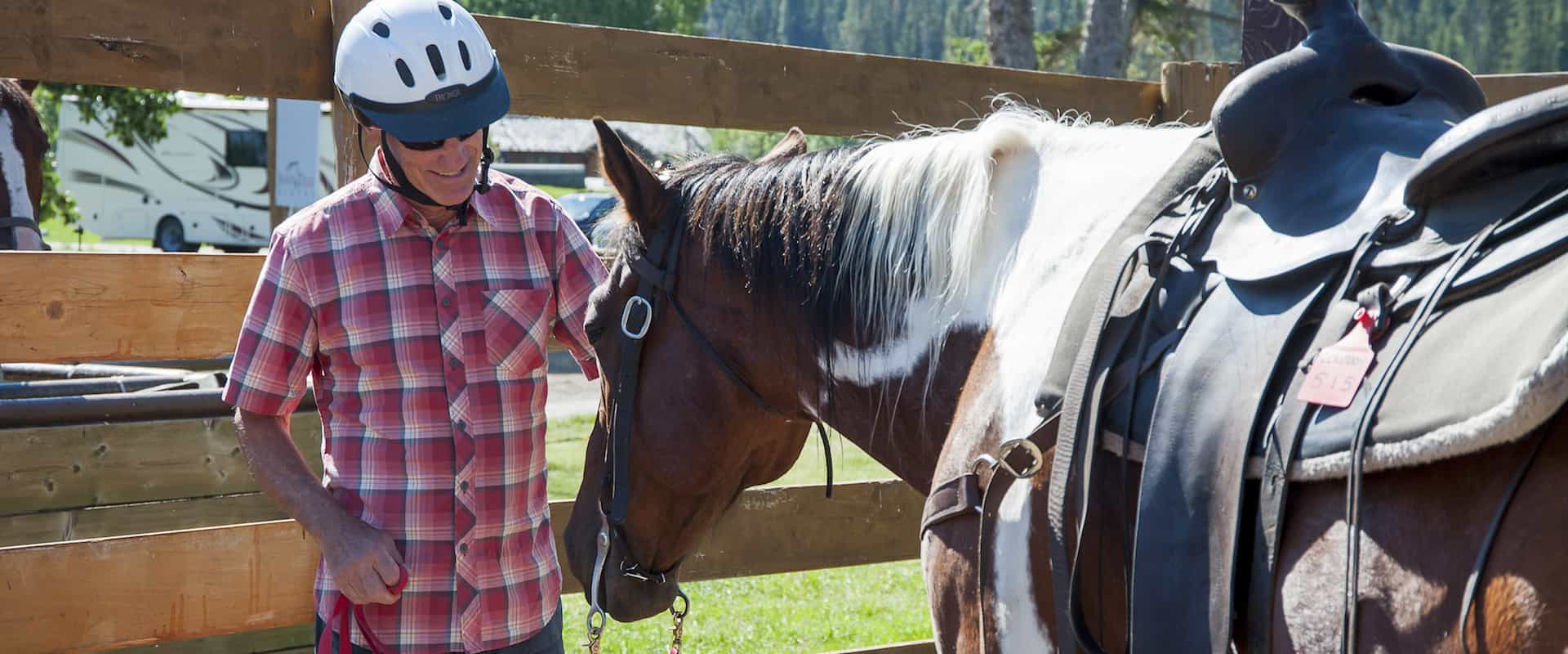 Meet your friendly horse before your horseback ride with Discover Banff Tours in the Canadian Rockies