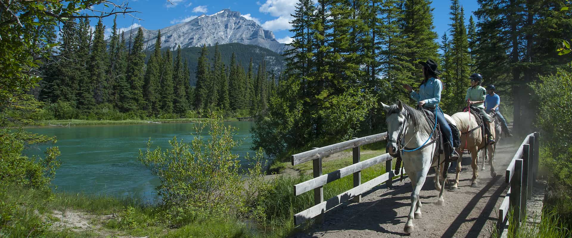 Ride along the Bow River on the Bow River Ride with Discover Banff Tours in the Canadian Rockies