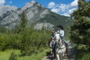 Ride into Banff's backcountry on a horseback trail ride from Warner Stables with Discover Banff Tours in the Canadian Rockies