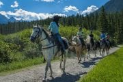 Take a Bow River horseback ride in Banff with Discover Banff Tours in the Canadian Rockies