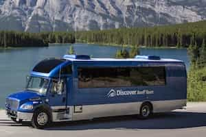 Take a group private sightseeing tour in a comfortable mini bus with Discover Banff Tours