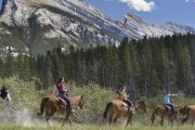 Take a guided horseback ride of Banff from Warner Stables with Discover Banff Tours in the Canadian Rockies