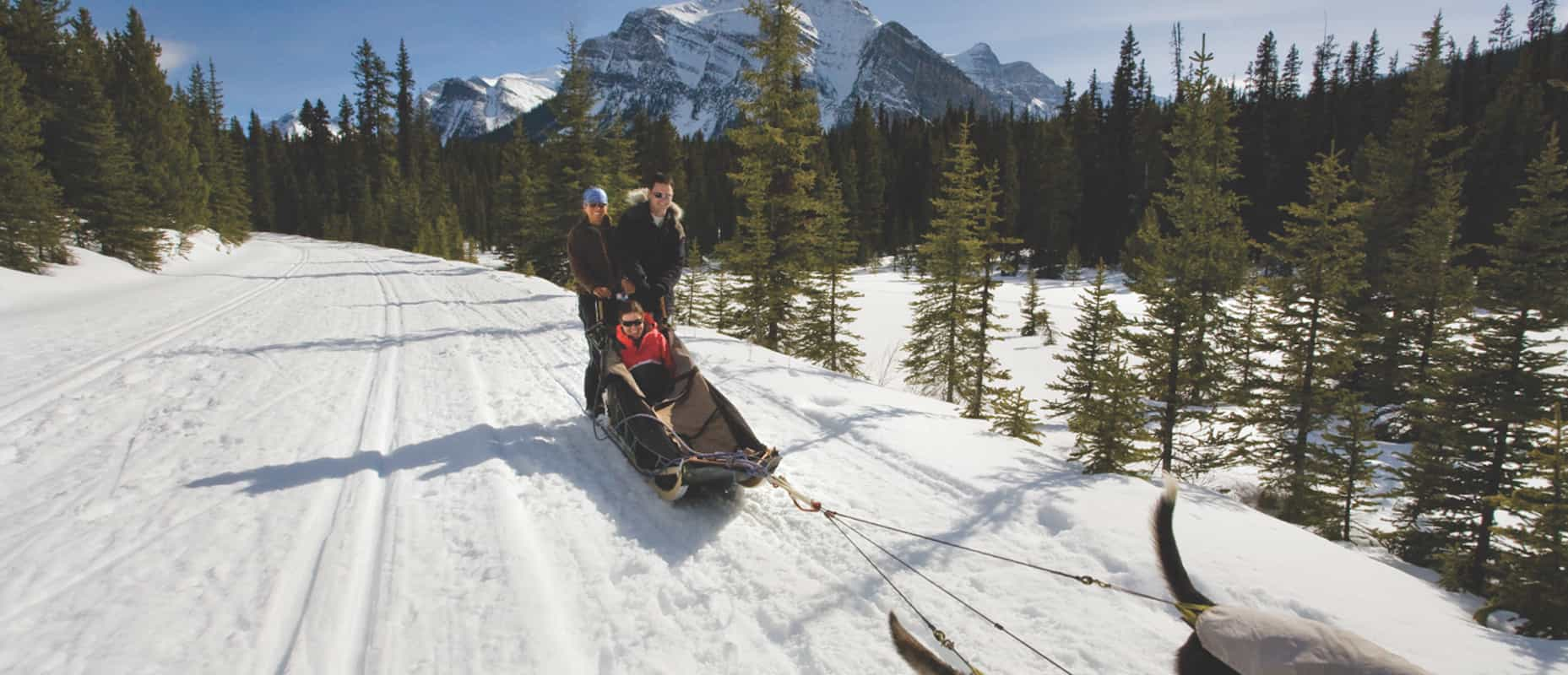 Experience dogsledding in Lake Louise in the Canadian Rockies