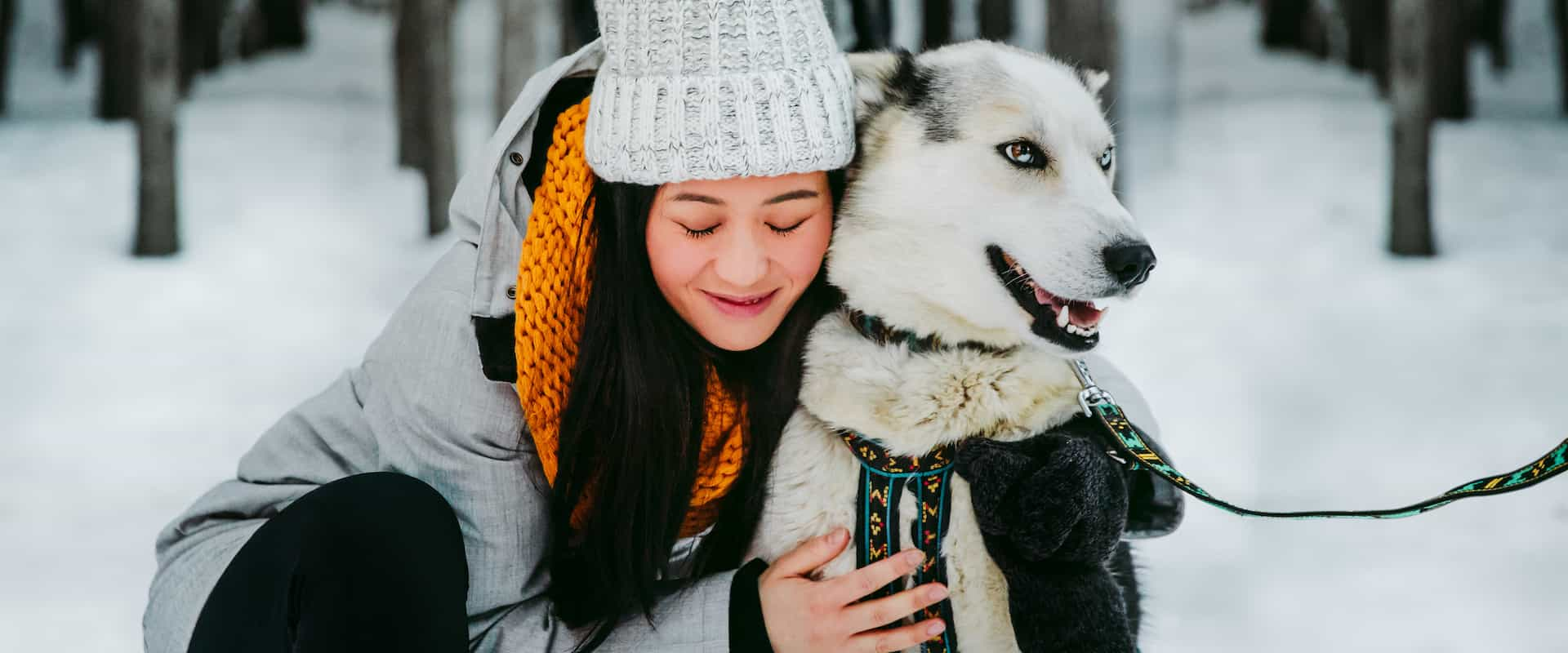 Get to know the dogs on a dogsled tour at Spray Lakes in the Canadian Rockies
