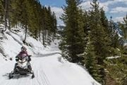 Take a full day snowmobiling tour to Panorama in the Canadian Rockies
