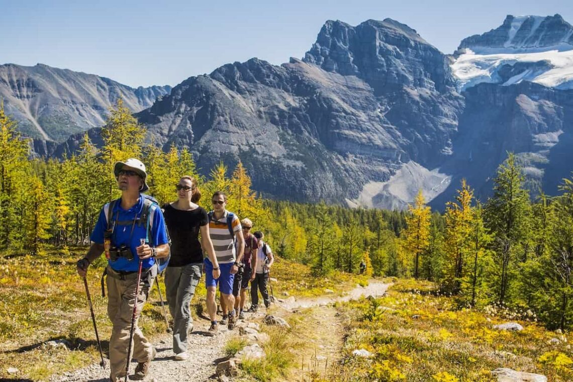 Explore the Larch Valley hiking trail with a professional guide with Discover Banff Tours