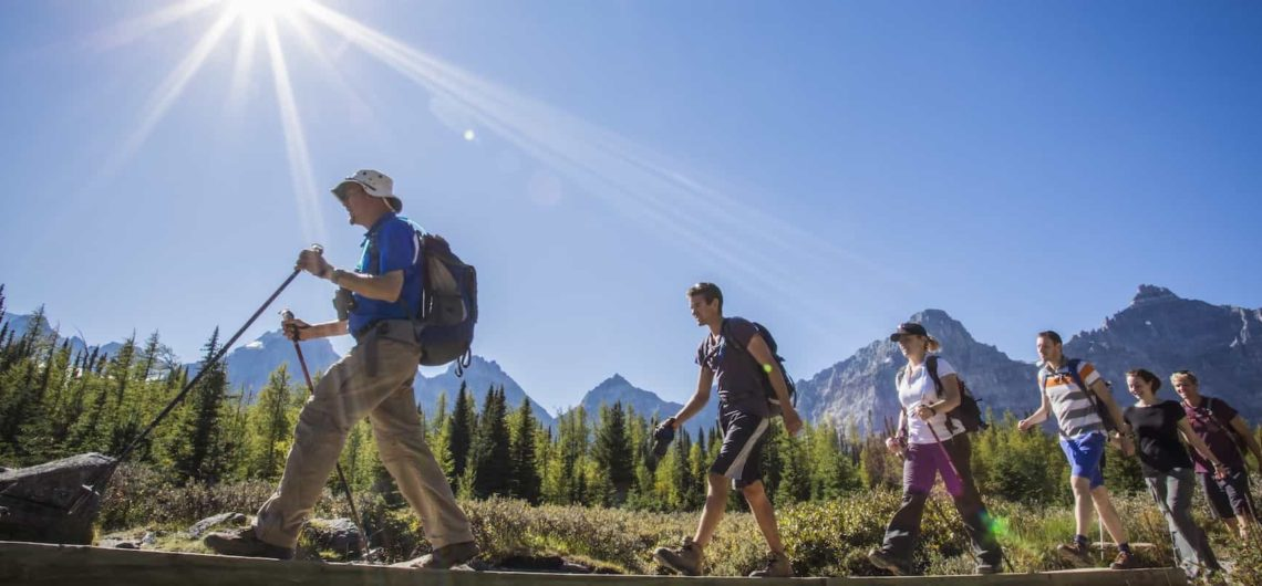 Take a guided hike to Larch Valley in Banff National Park with Discover Banff Tours