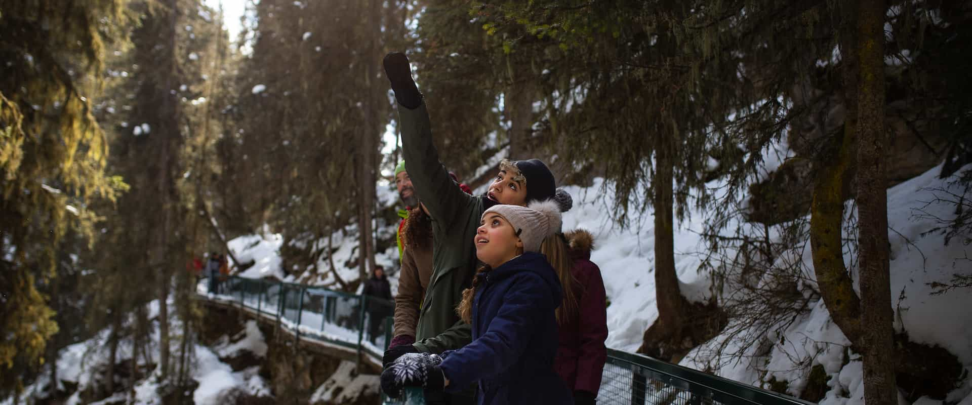 Winter Family Icewalk at Johnston Canyon with Discover Banff Tours