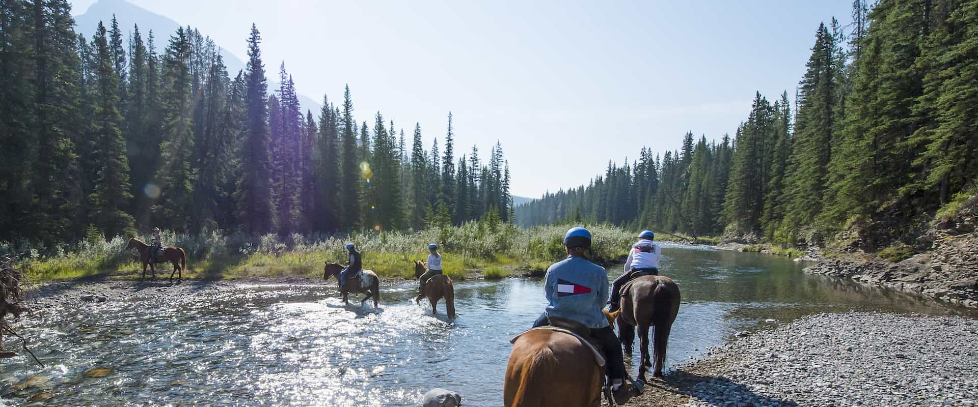 Horseback Ride – Spray River 1 Hr