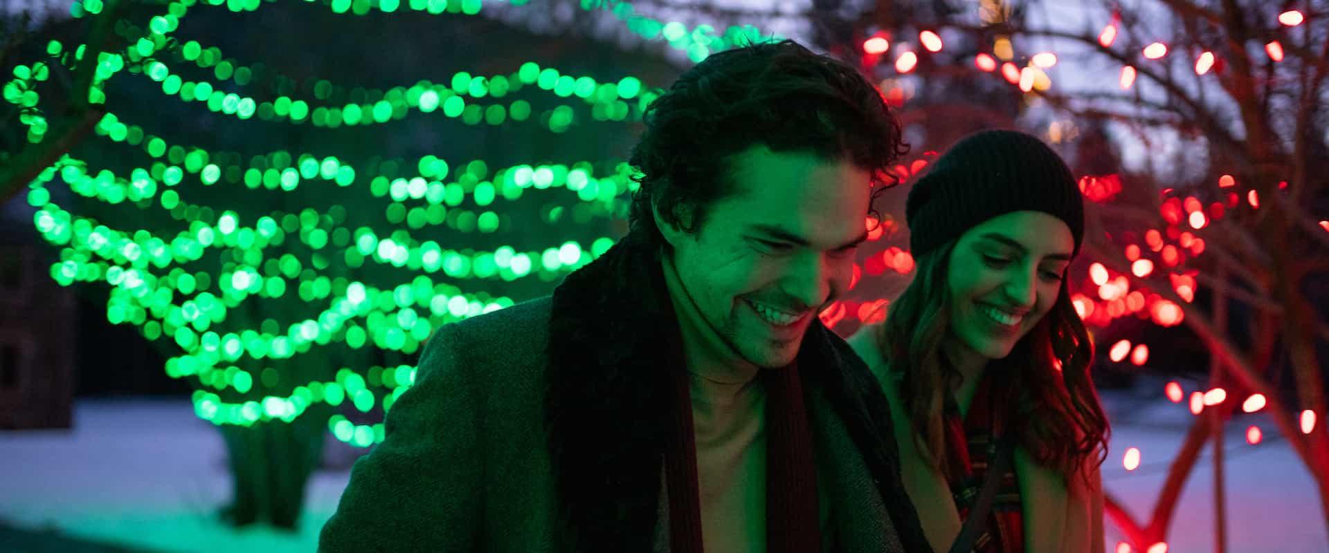 Christmas Lights at Cascade Gardens