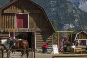 Meet at Warner Stables for your horseback ride