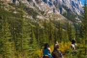 See mountain scenery on a backcountry vacation