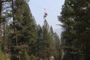 Forest zipline tour