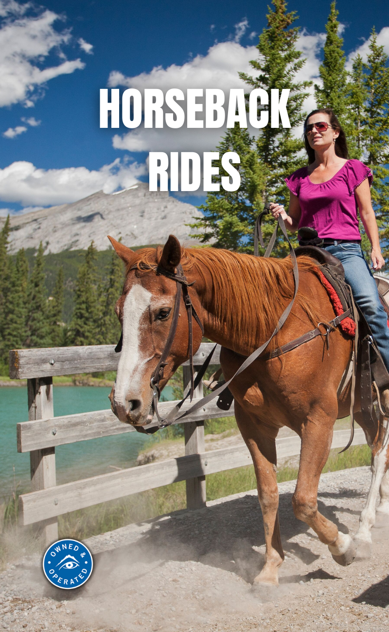 banff horseback trail rides with Discover Banff Tours