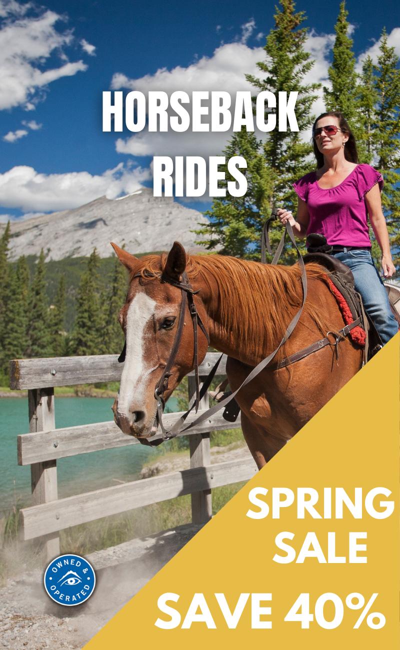 Save 40% on Spring horseback Rides